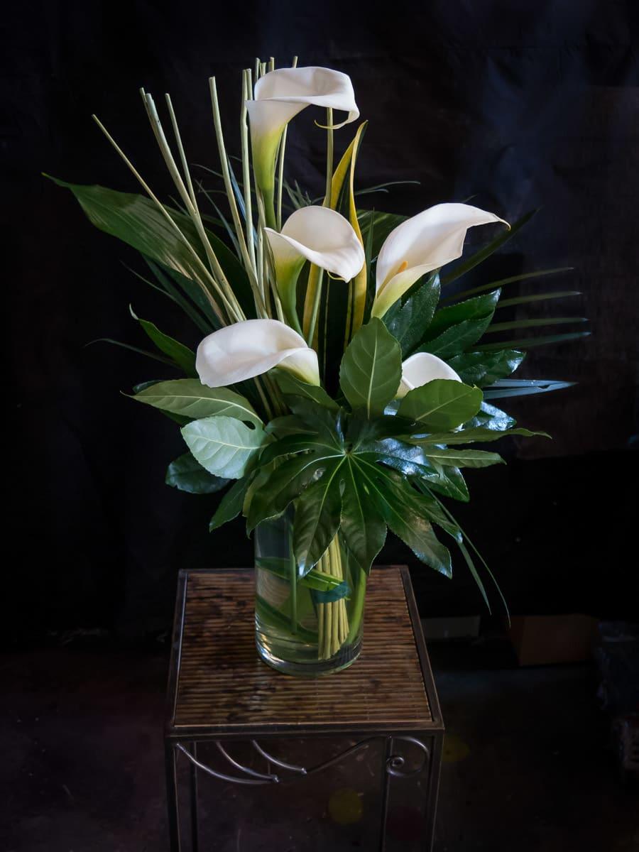 Modern Calla Lily Vase By Bloom N Grow Florist
