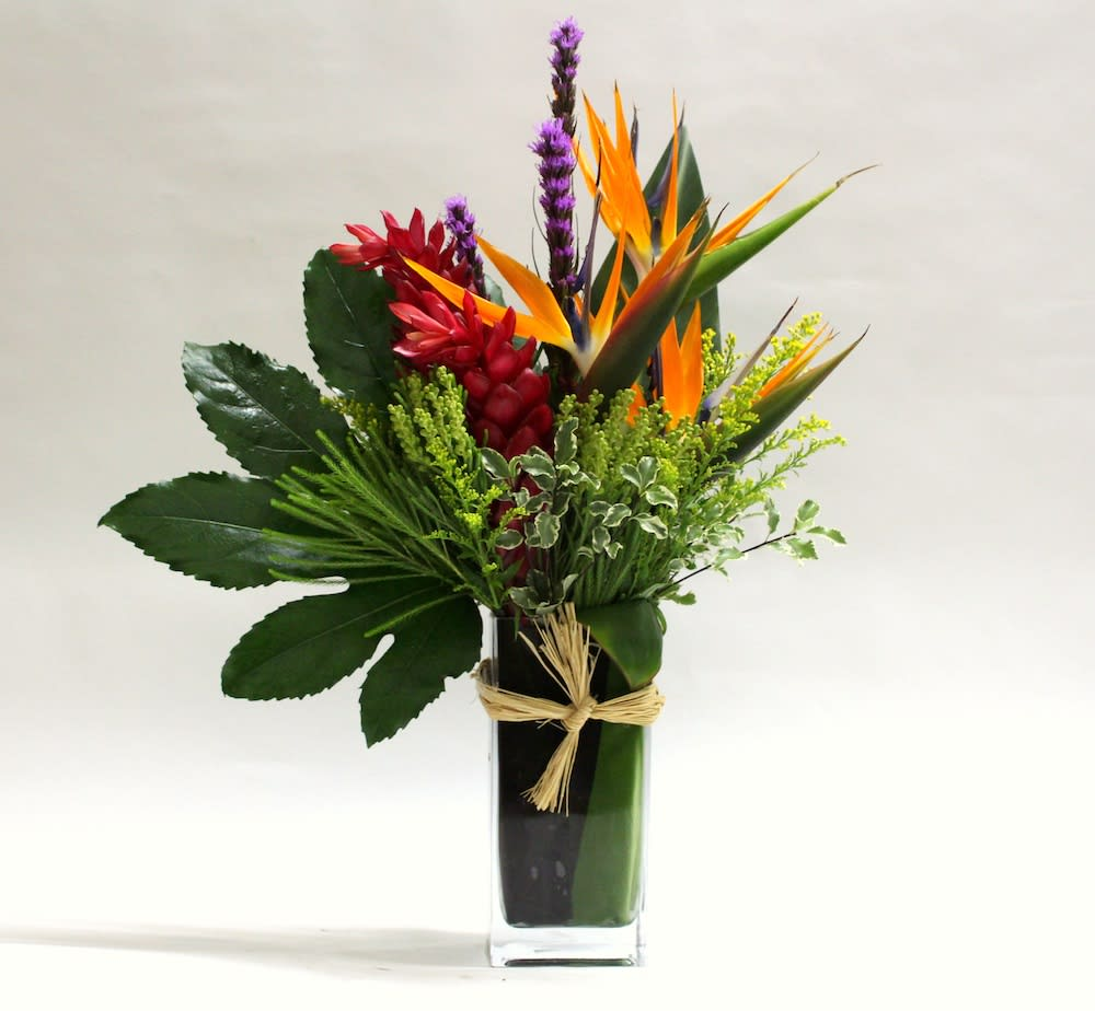 Tropical Mix - Mix of tropical flowers
