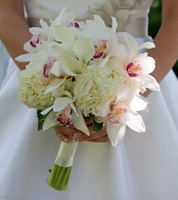 White Orchid And Calla Lily Bouquet In Wilmington De Petals
