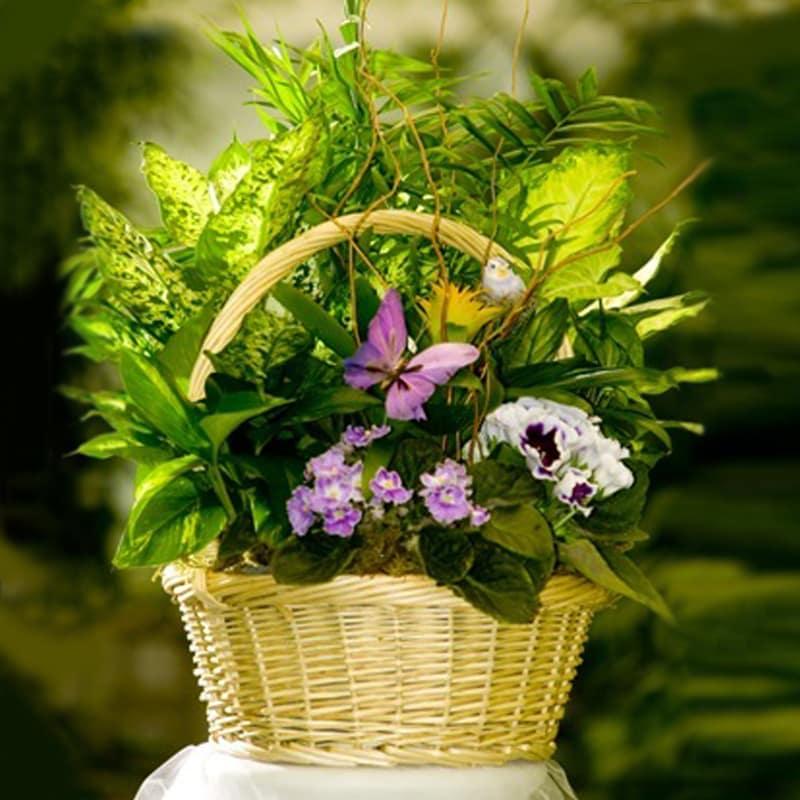 European Garden 107 In Anaheim Ca Visser S Florist