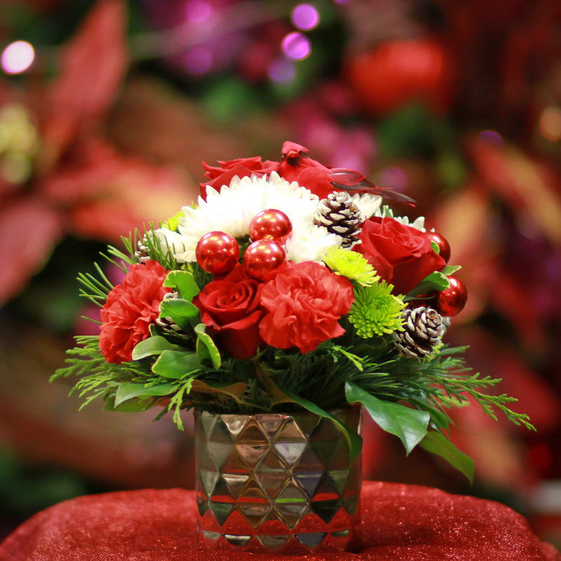 Rosy Cheeks - Rosy cheeks, and pretty red flowers just fit together in the winter