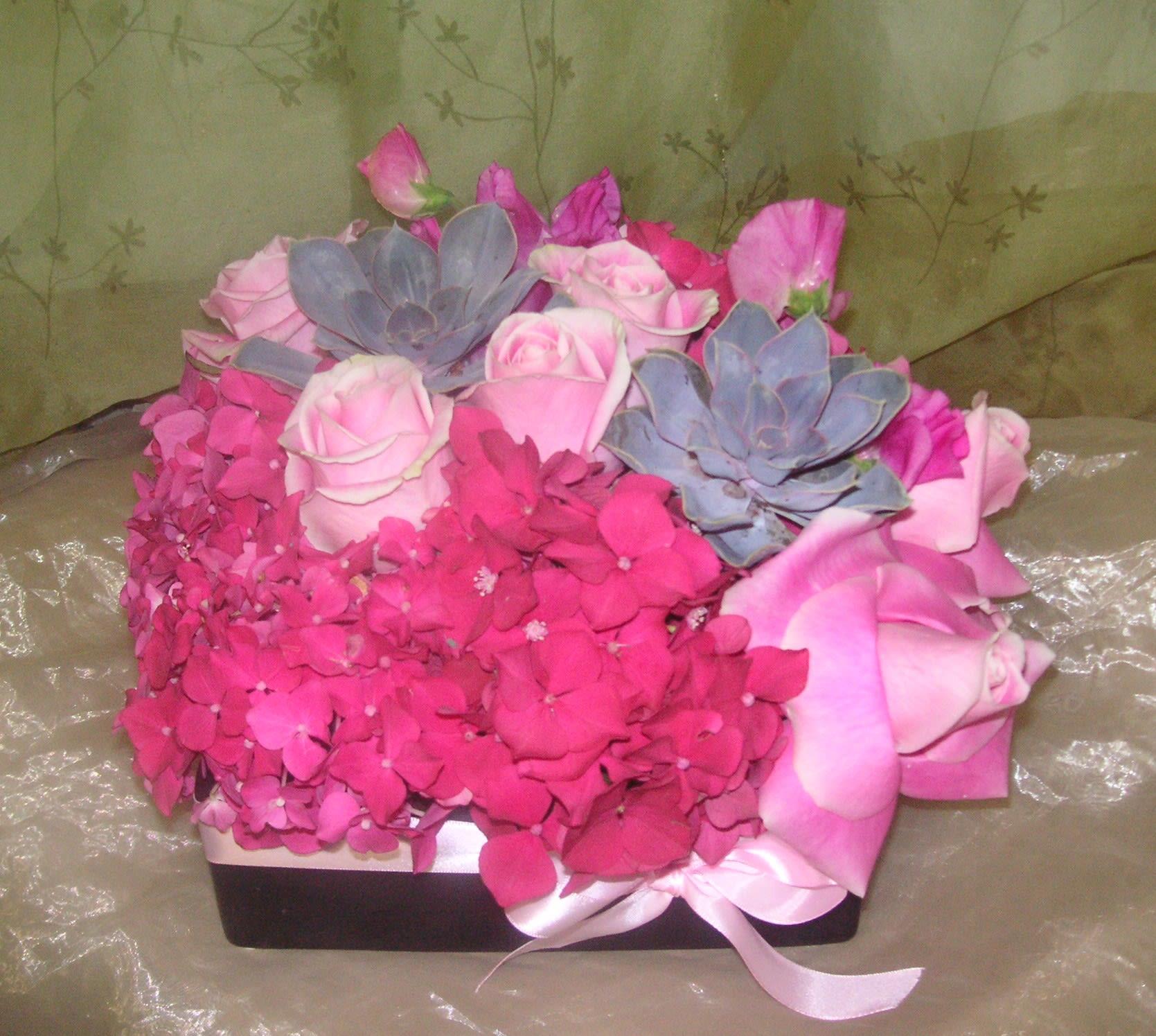 plush pinks in los angeles, ca   westwood flower garden