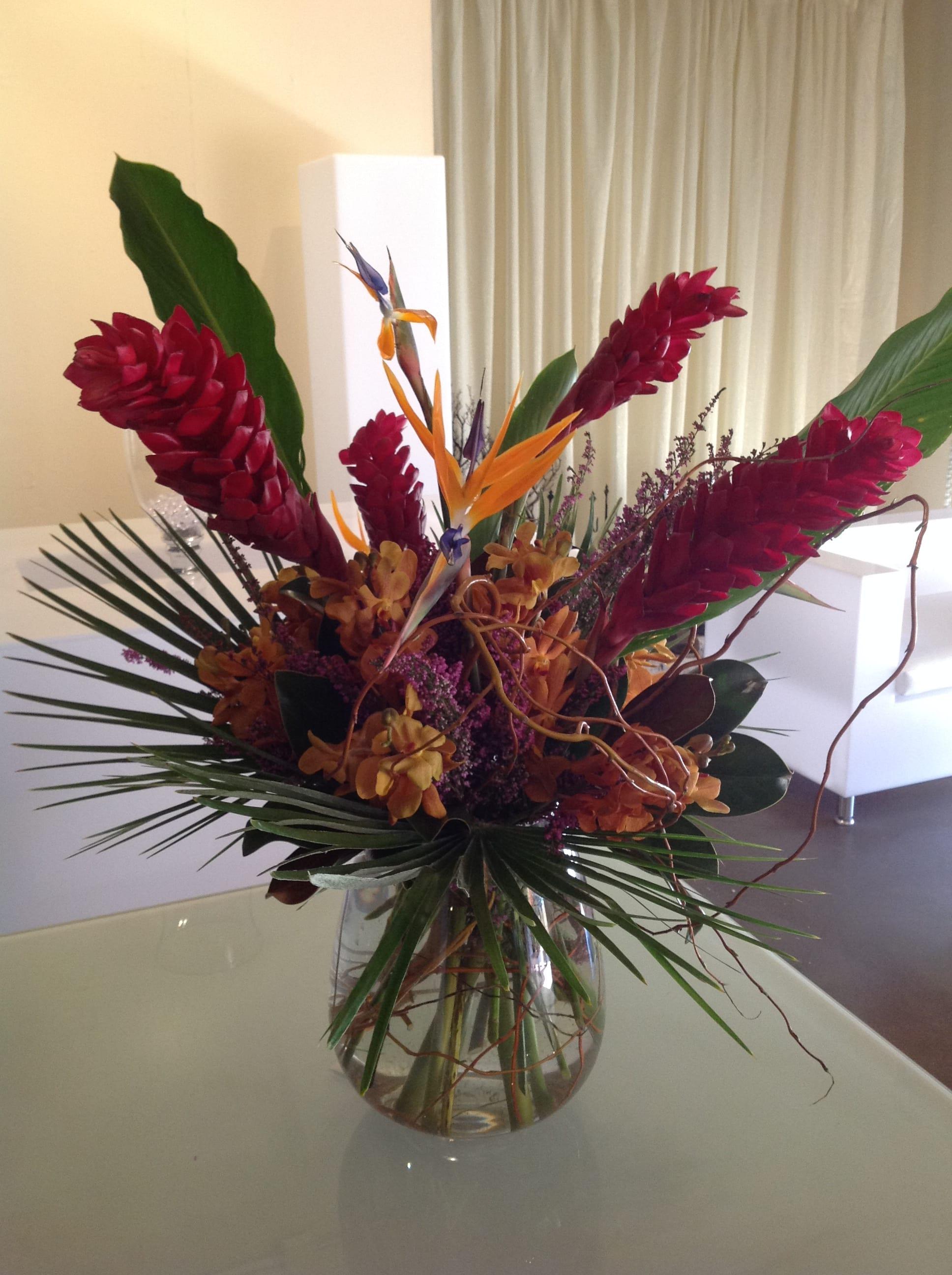Tropicals In Palm Desert Ca Palm Springs Flower Mart