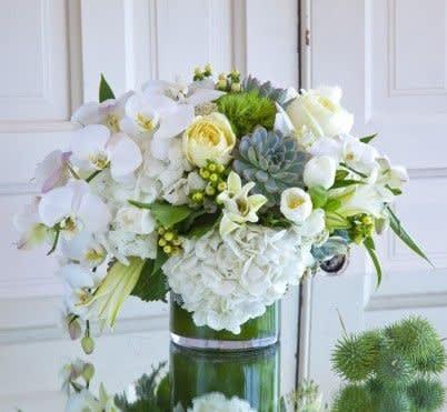 Green And White Splendor In Atlanta Ga Flowering Eventsdarryl