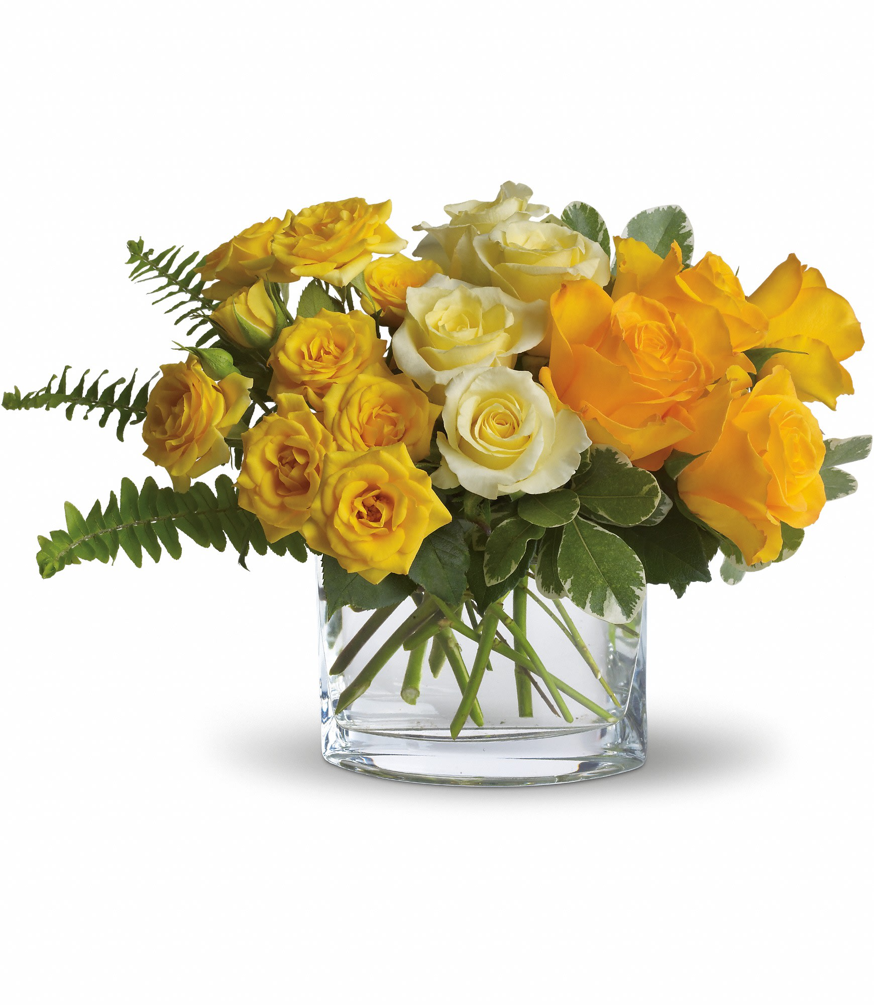 The Sun'll Come Out by Teleflora in Melbourne, AR | Melbourne Florist