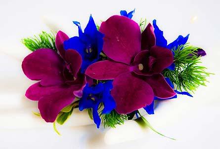 Vibrant Orchid And Belladonna Boutonniere In Davis Ca Strelitzia