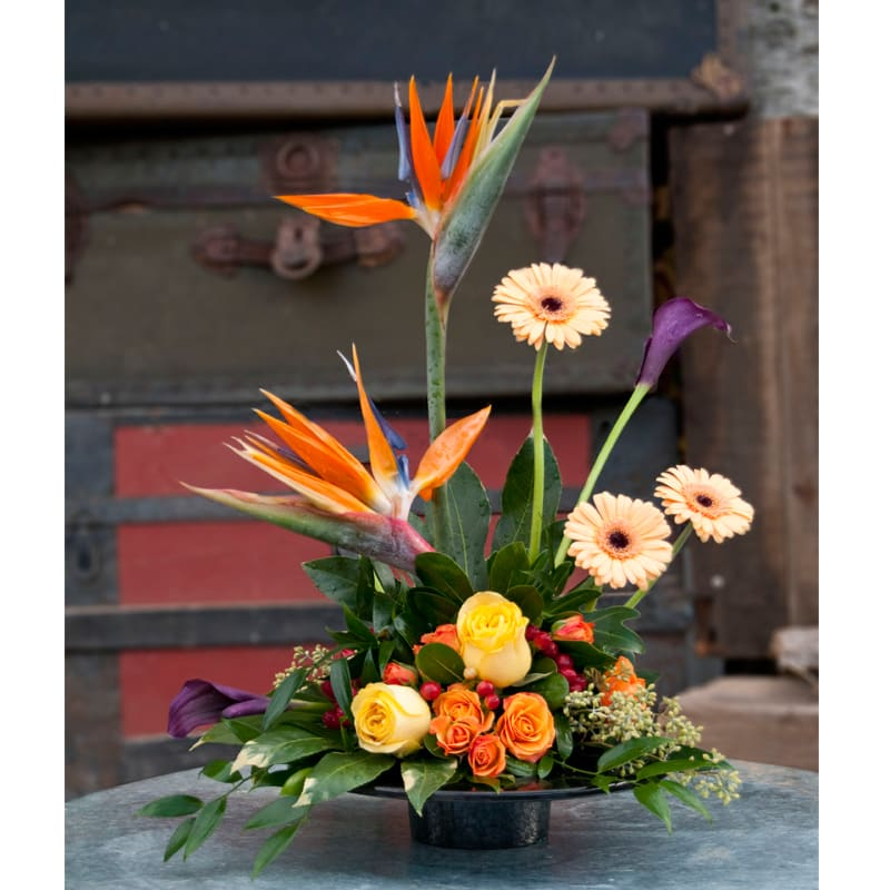 Tropical assortment in design tray with seasonal accent flowers all in the