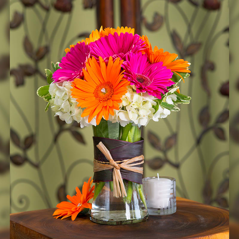 Gerbera Daisy Arrangements Vases: Bright Gerbera Daisies For The Special One! In