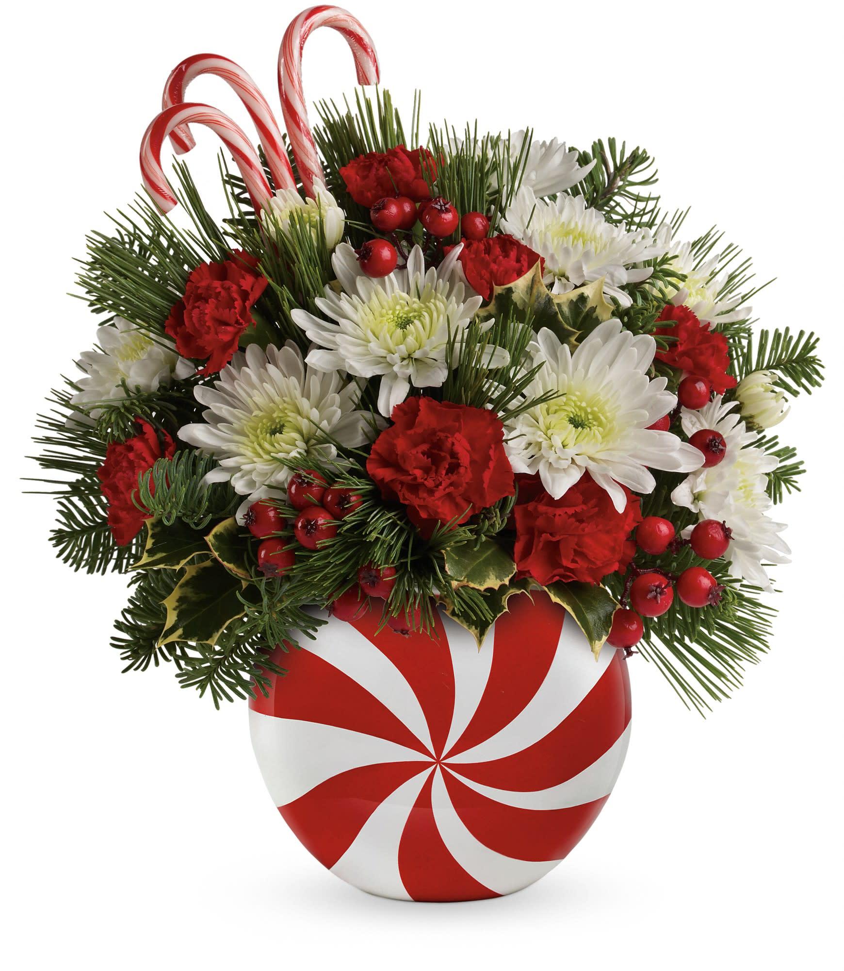 Teleflora Christmas 2019.Teleflora S Candy Striped Christmas Bouquet In San Jacinto Ca San Jacinto Florist