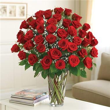 4 Dozen Red Roses The Ultimate In Elegance Premium Long Stem Roses