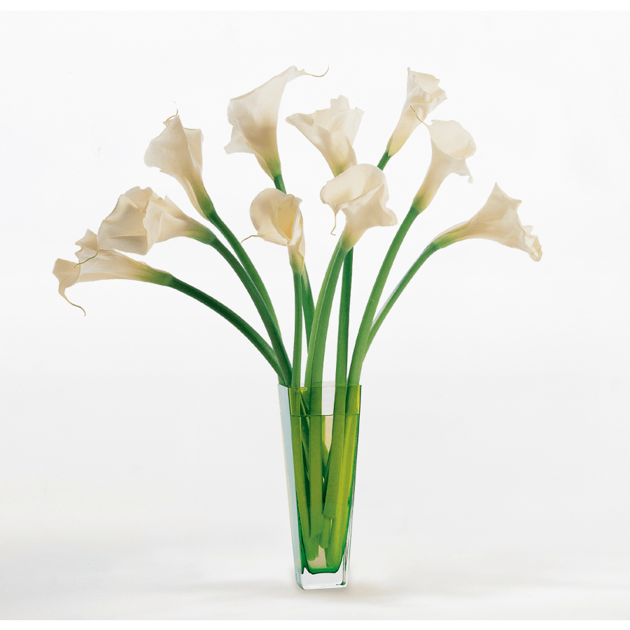 Calla Lilies In Simplicity In Escondido Ca Flower Barrel