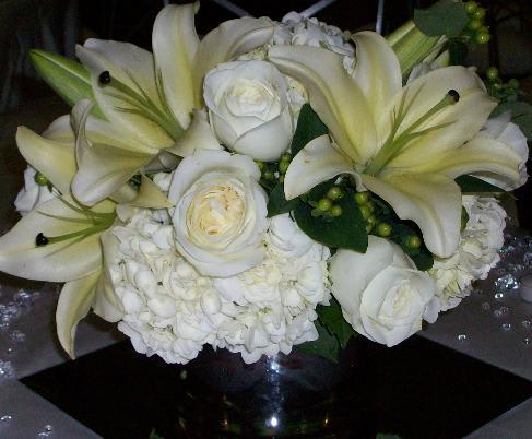 Pure White In Phoenix Az Artistic Surroundings