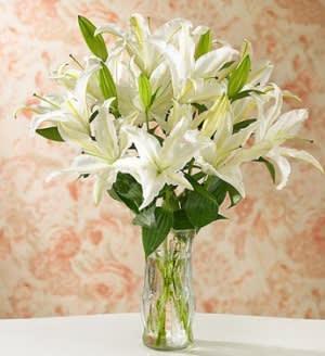 White Stargazer Lilies In San Jose Ca Valley Florist