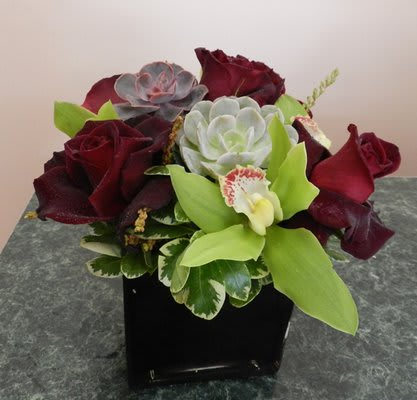 Black Baccara By Nature S Gallery Florist Inc