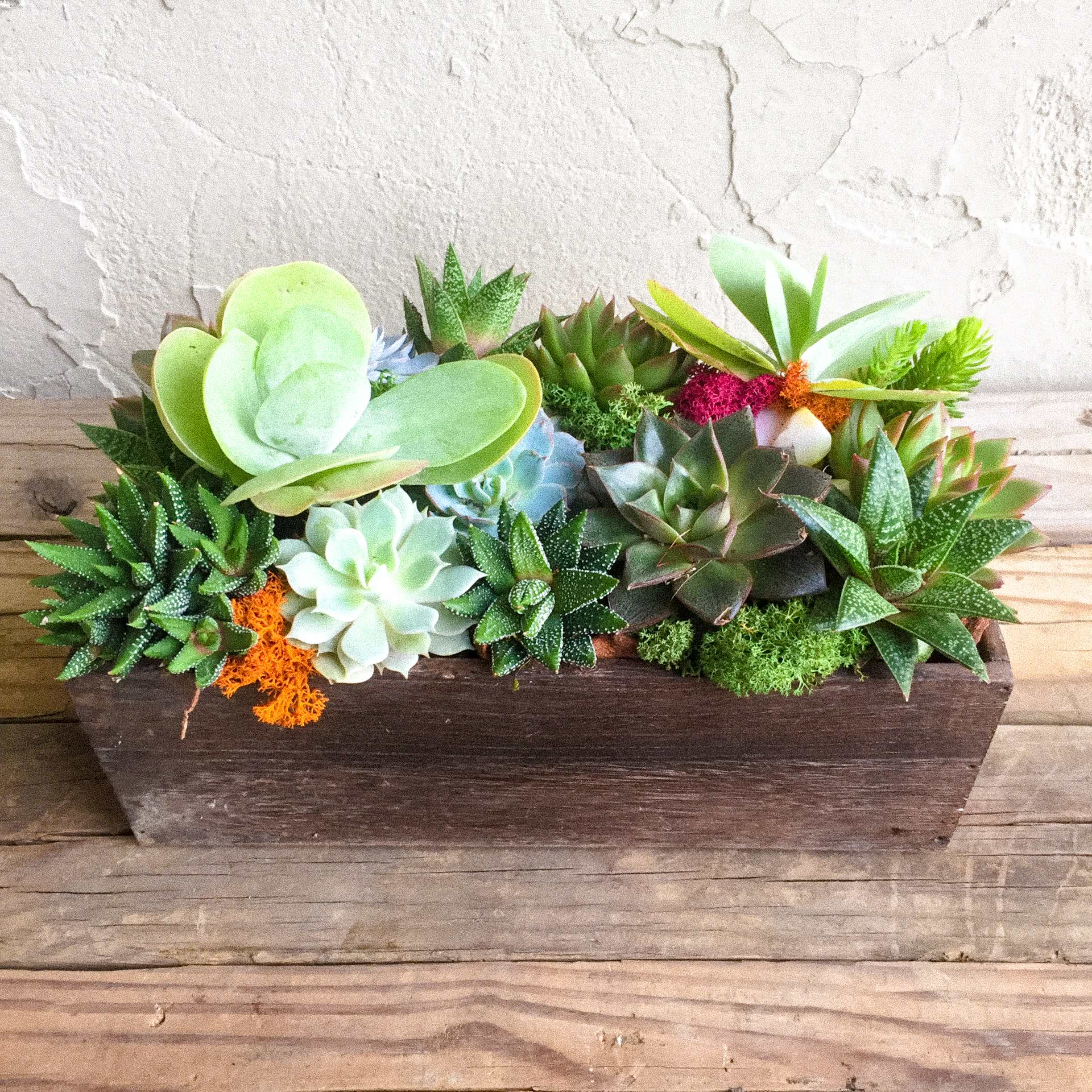 Succulent Centerpiece: Rustic Wood Trough In Washington