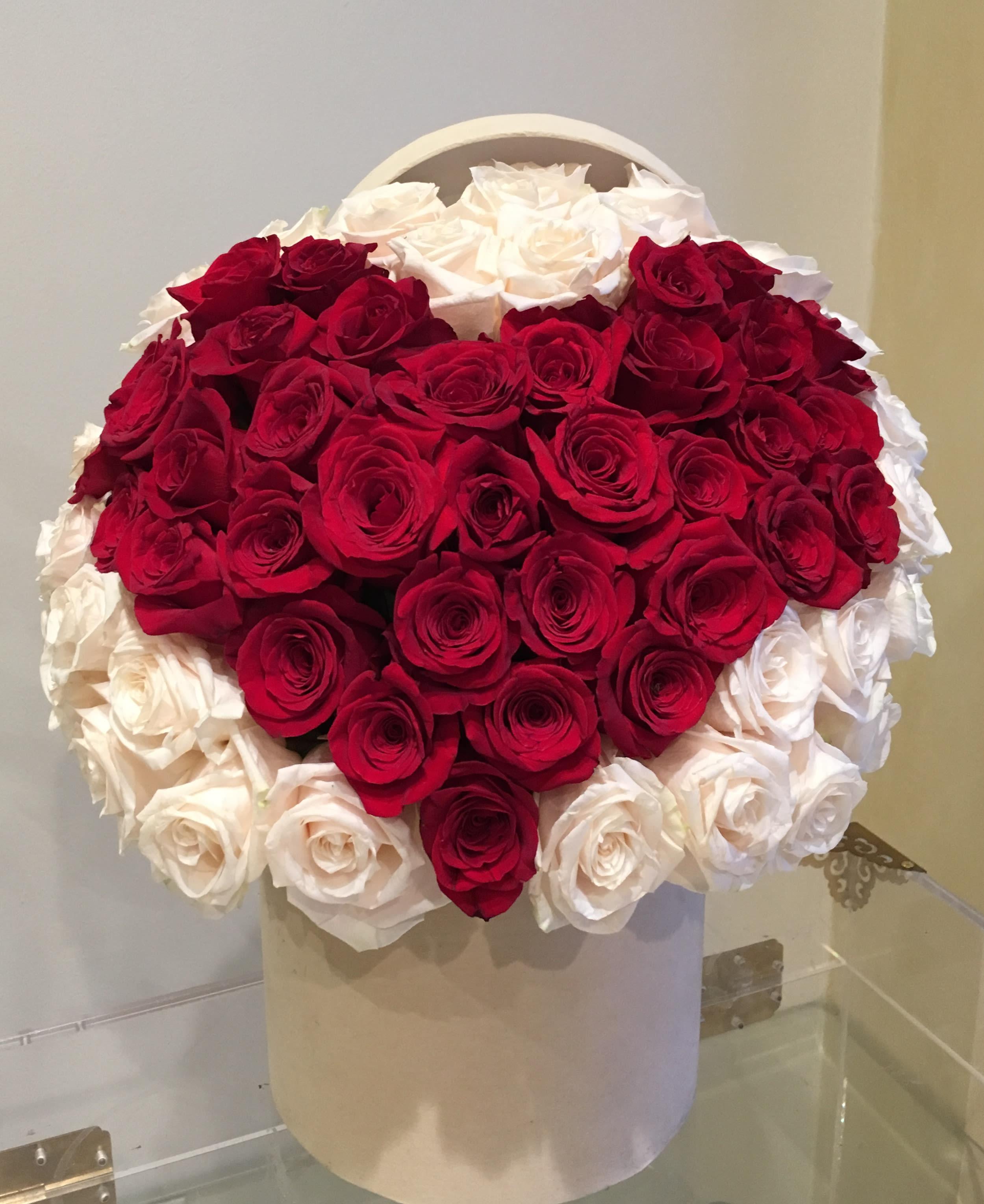 heart shape rose