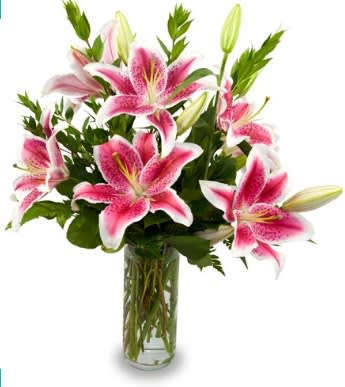 Lovely Pink Lillies By Deans Florist