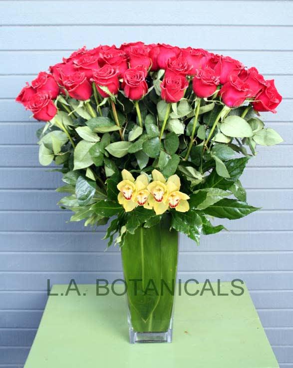 Four Dozen Roses In Los Angeles Ca La Botanicals