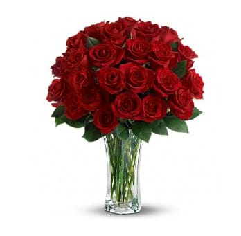 Four Dozen Red Roses In Los Angeles Ca Beverly Blossoms