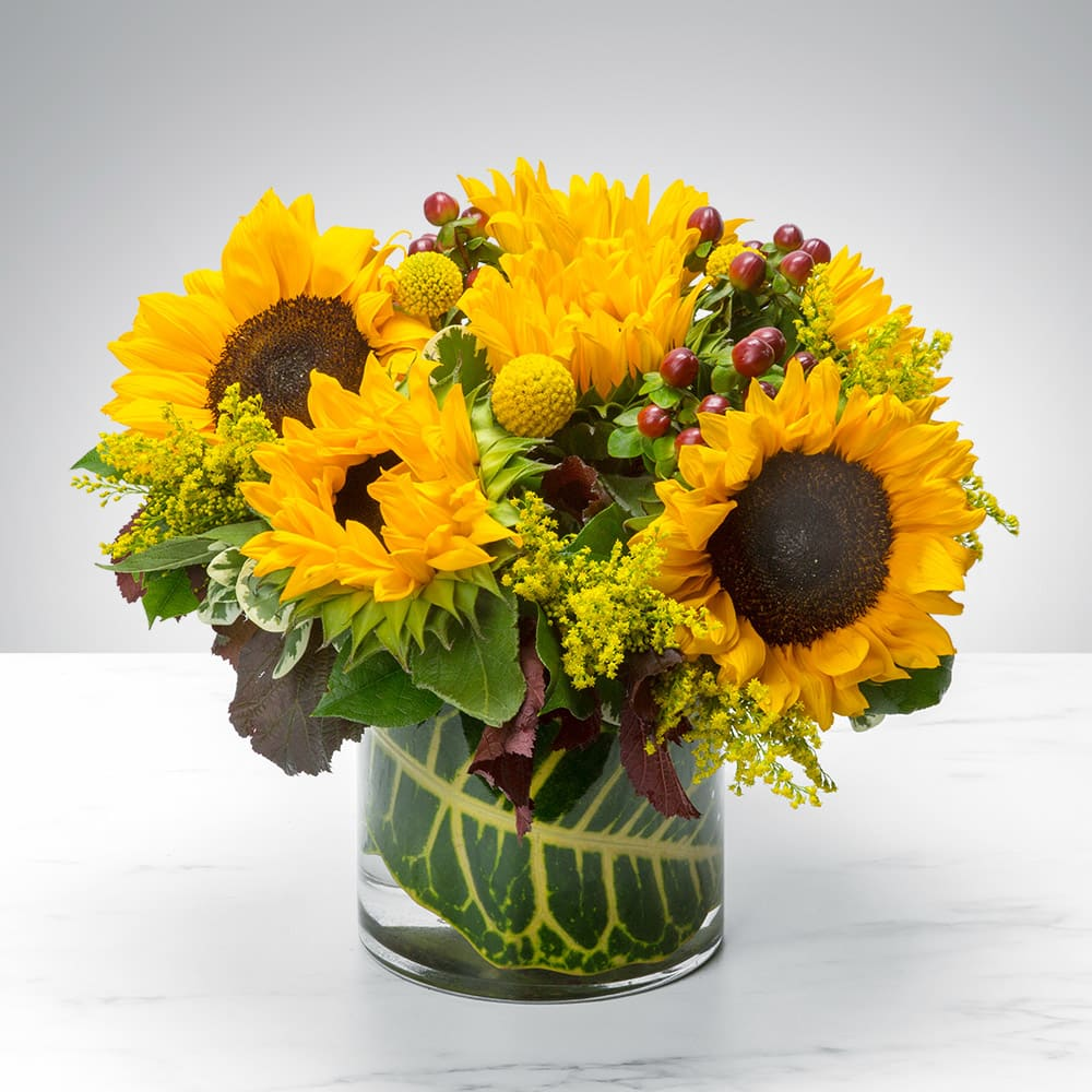 Sunny Sunflowers by BloomNation™