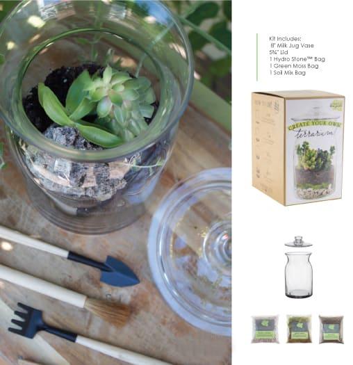 Diy Terrarium Kit In Chantilly Va Twinbrook Floral Design