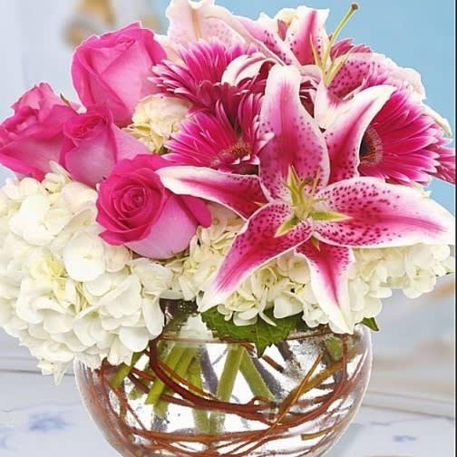 Stargazers In Love - Florist in Granbury