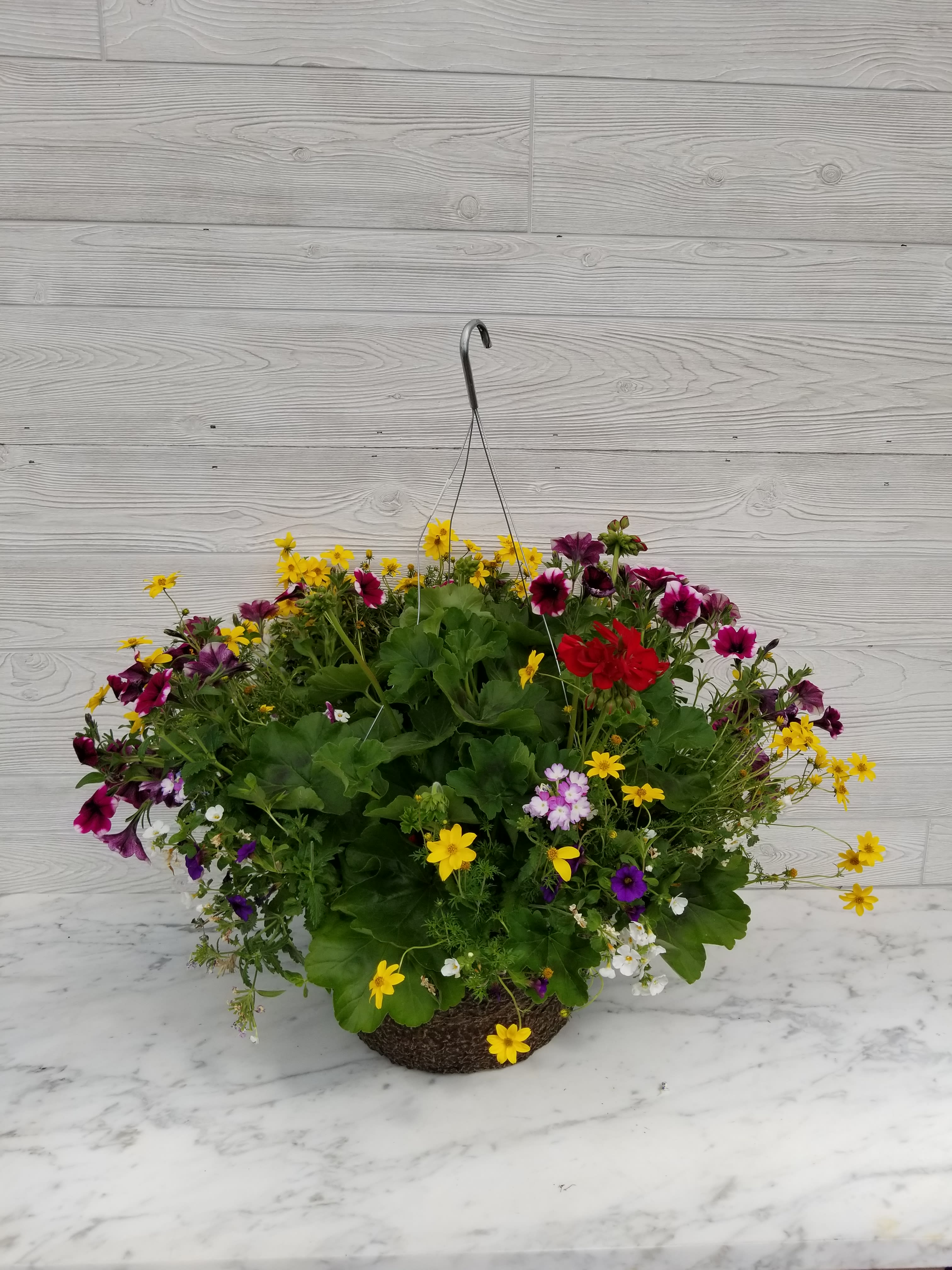 Extreem Deluxe Mixed Sun Hanging Basket in Evanston, IL   West End Florist JD79