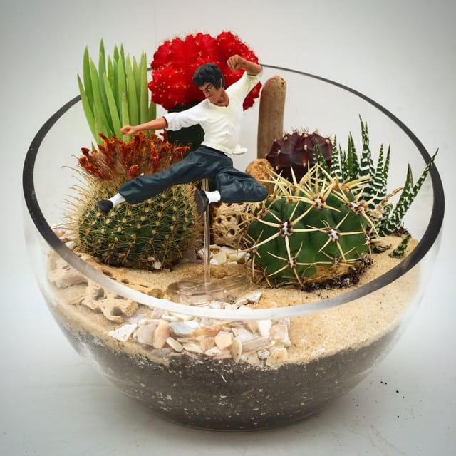Wowsome Cactus Terrarium Action Figure By Wowsome Blossom