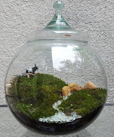 Self Sustaining Moss Terrarium Hillside Scene In Portland Or