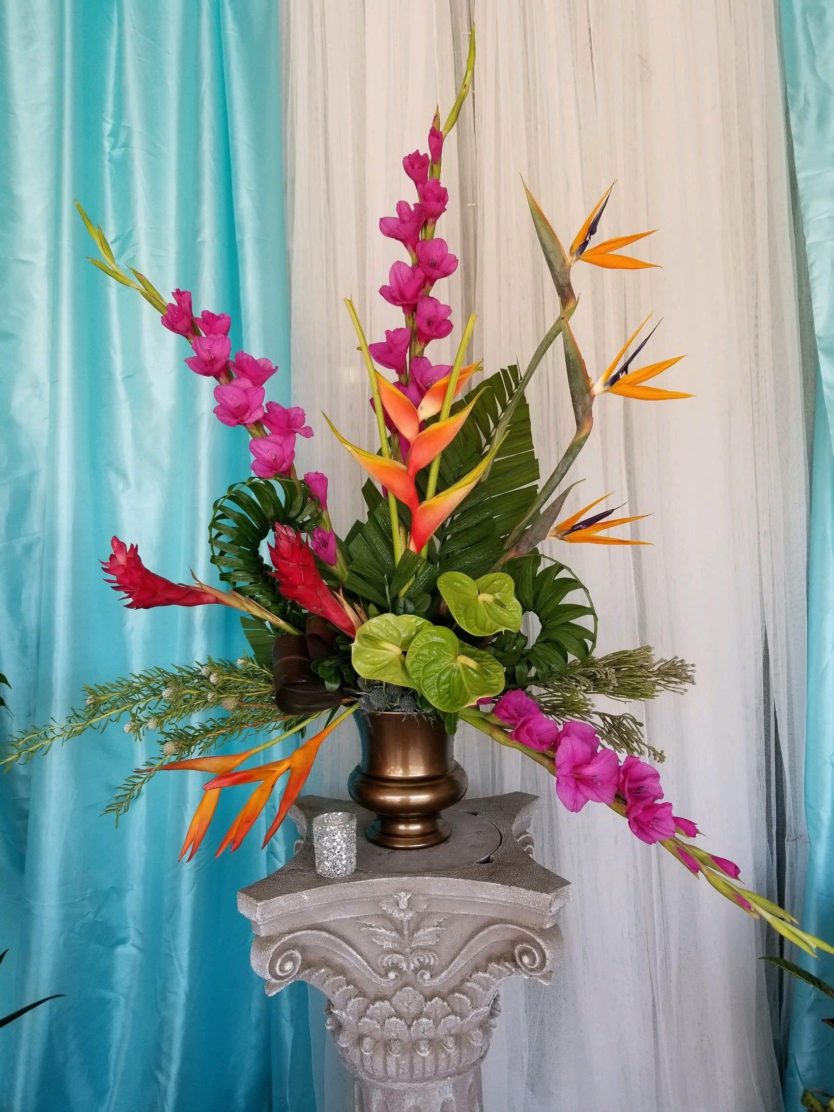 Hot Tropics in Phoenix, AZ | Arcadia Flowers & Gifts