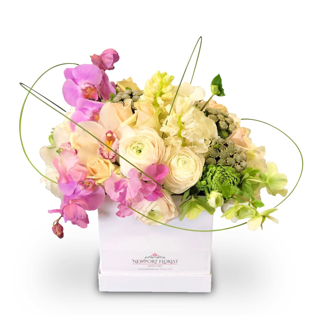 Blooms In A Box By Newport Florist Nf273 In Newport Beach Ca