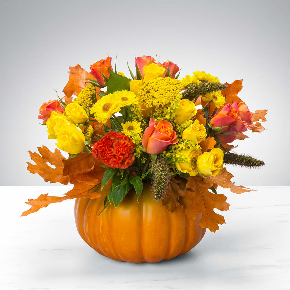 Pumpkin Power by BloomNation™ in Roswell, GA | Roswell Garden Flowers