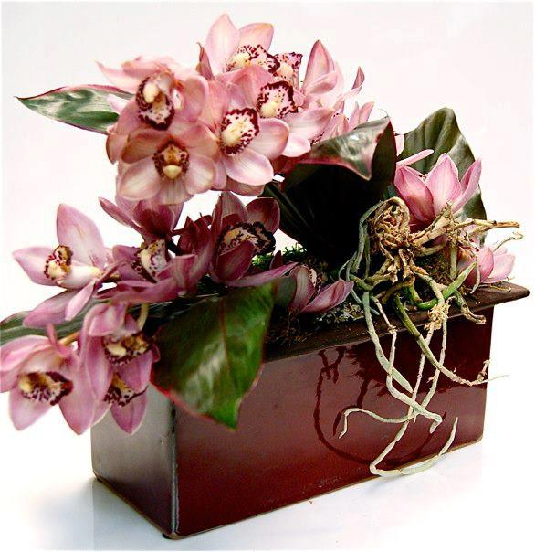 Orchids Galore 12900 Same Day Delivery ADD TO