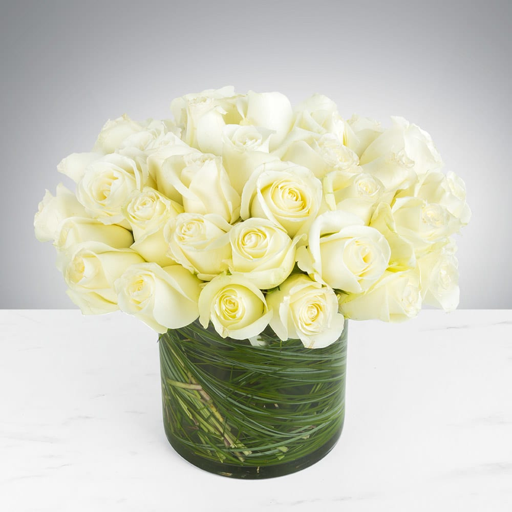 Two Dozen White Roses by BloomNation™