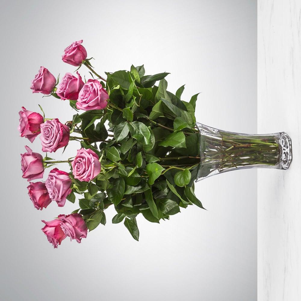 Dozen Long Stemmed Lavender Roses by BloomNation™
