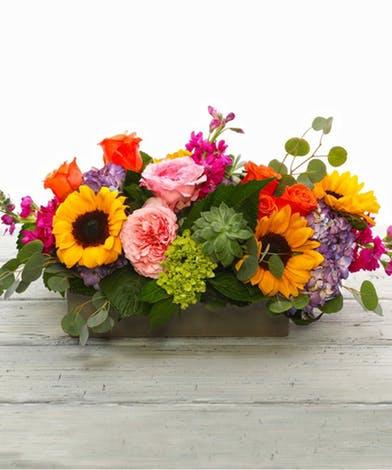 Vibrant farm fresh flowers, including radiant sunflowers, garden roses, hydrangea, fragrant stock