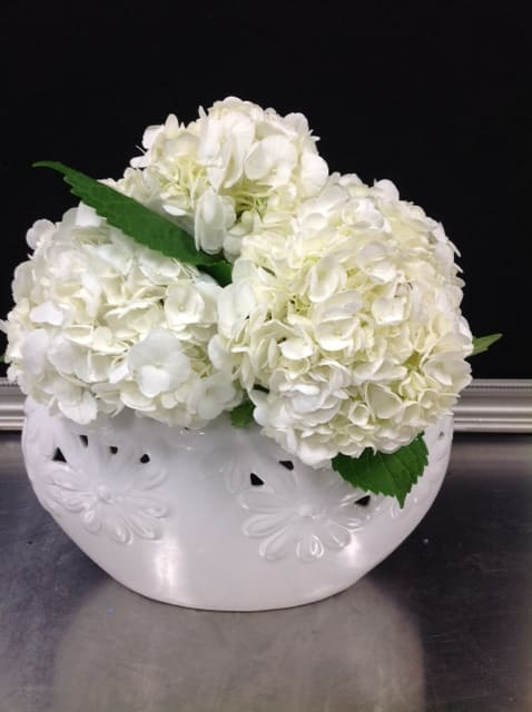 Oval Garden Hydrangea Arrangement By Expressions Floral Design Studio