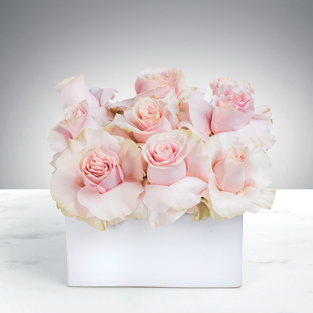Blush Pink Roses In Chicago Il Mudd Fleur