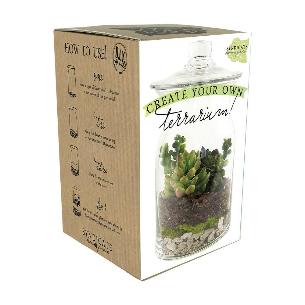 Terrarium Kit In Portland Or Botanica Floral Design