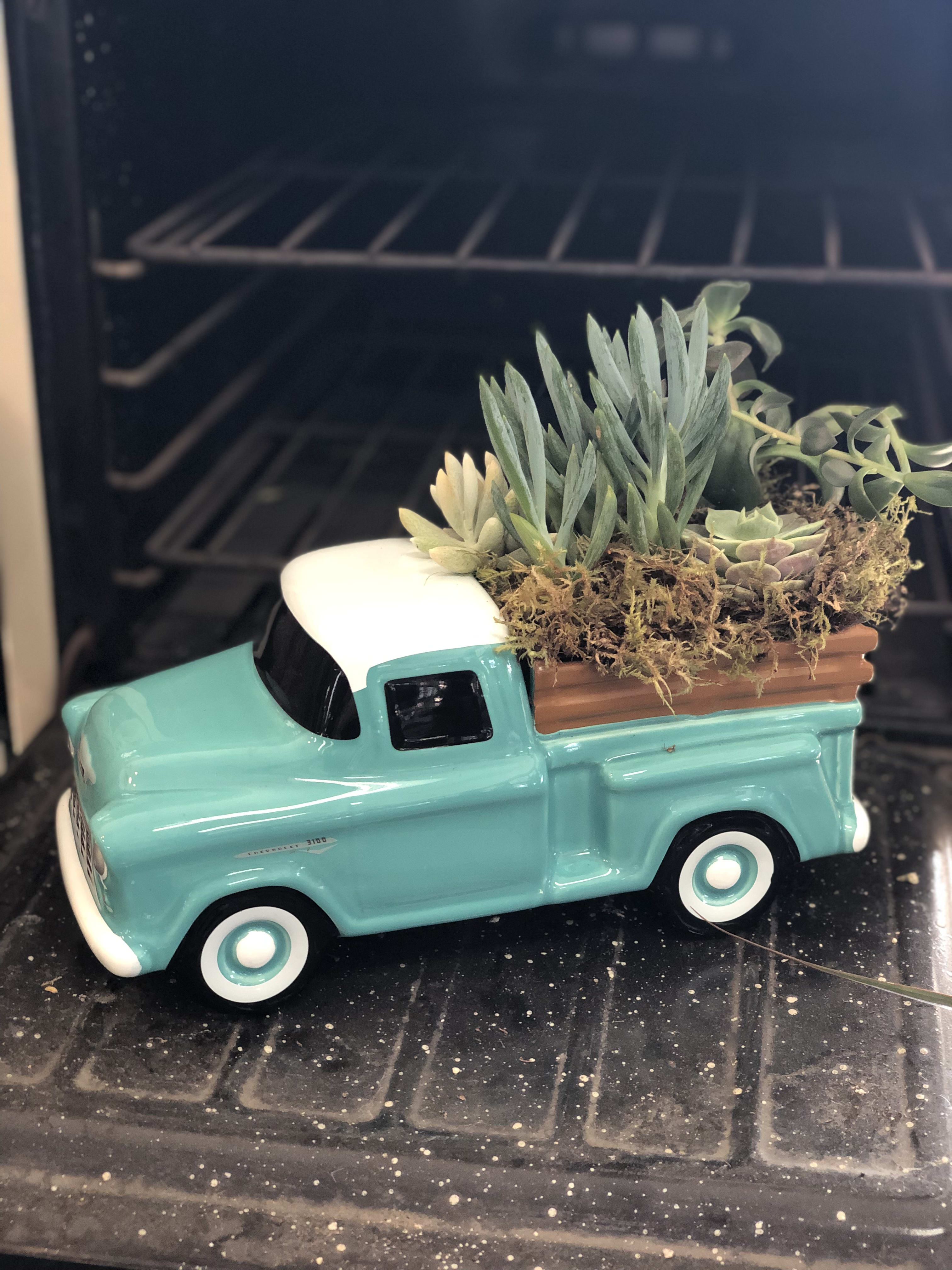 Classic Chevy Trucks For Sale >> Chevy Truck Succulent Style In Modesto Ca Fresh Ideas Flower Co
