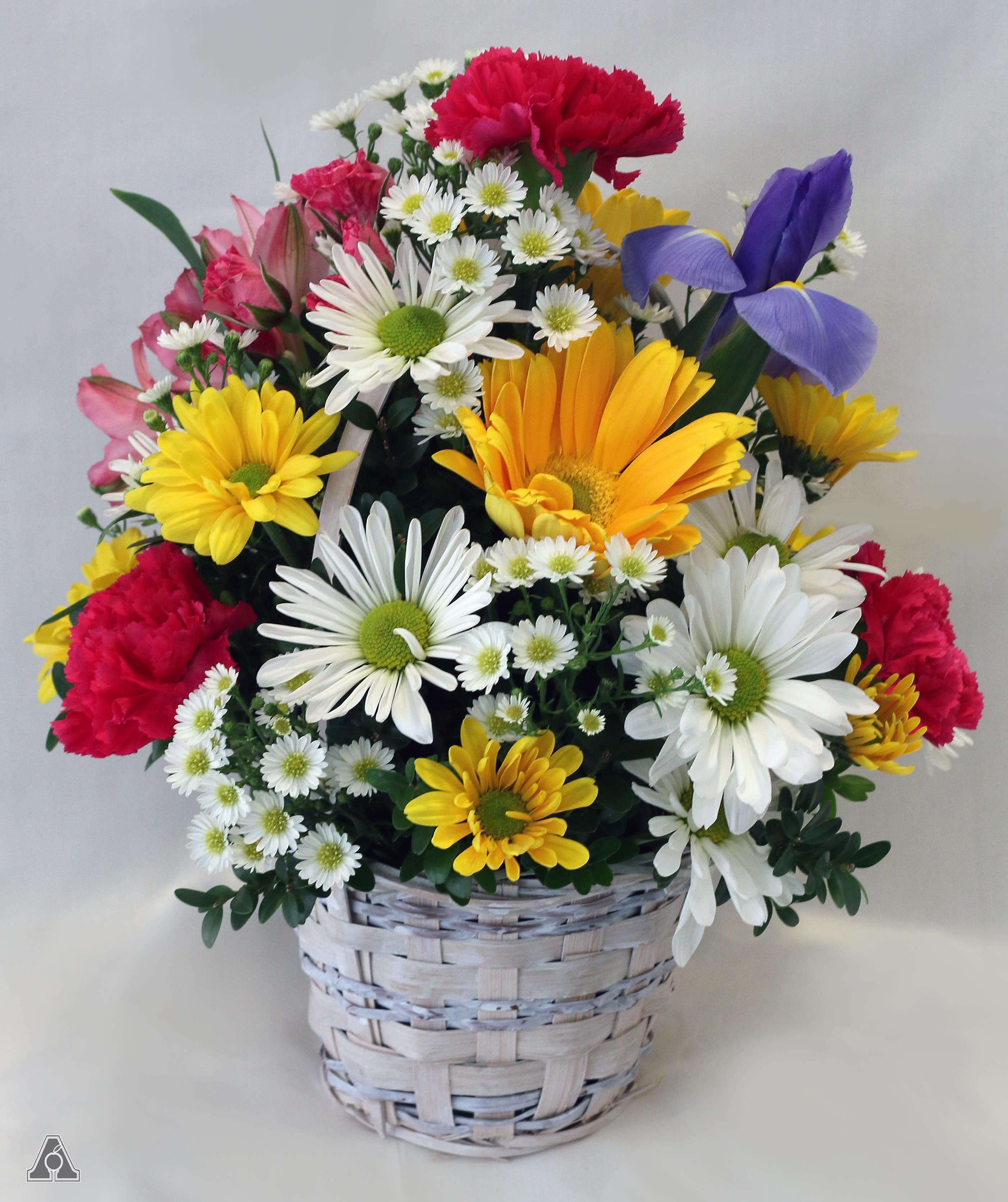 Fresh Spring Basket In Amherst Ma Atkins Farms Flower Shop