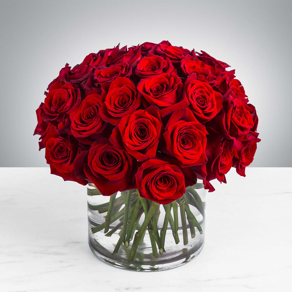 Three Dozen Red Roses By Bloomnation In Hollywood Ca Petes Flowers