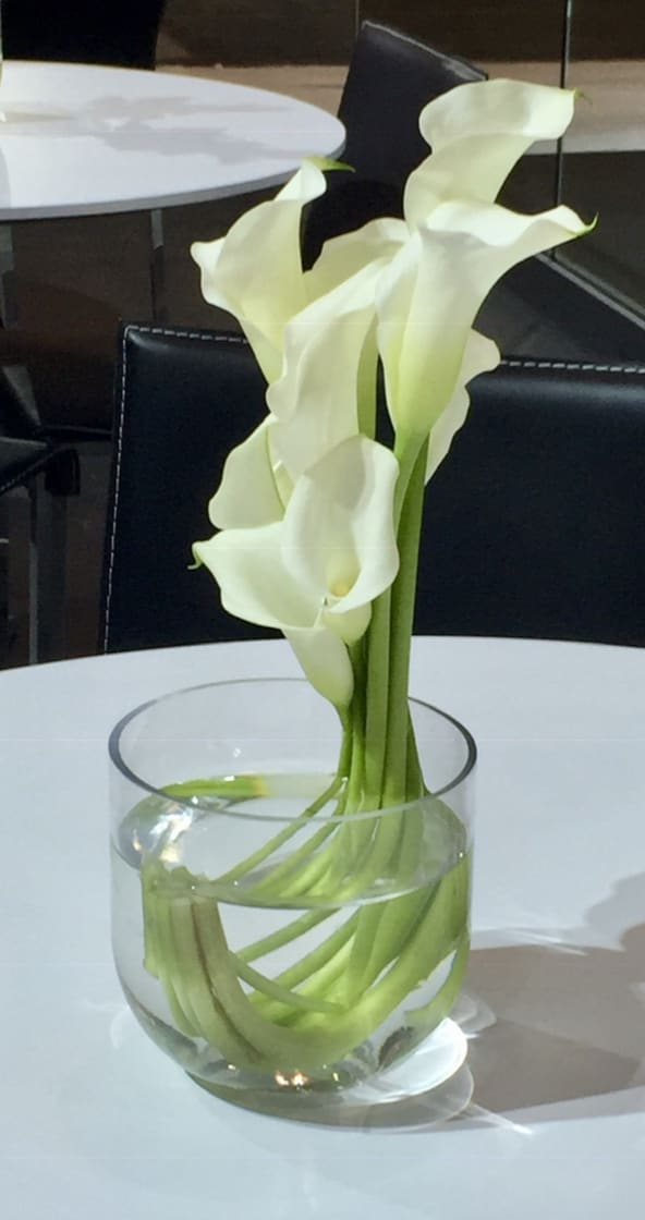 Calla Lily Unique In New York Ny Richard Salome Flowers Inc