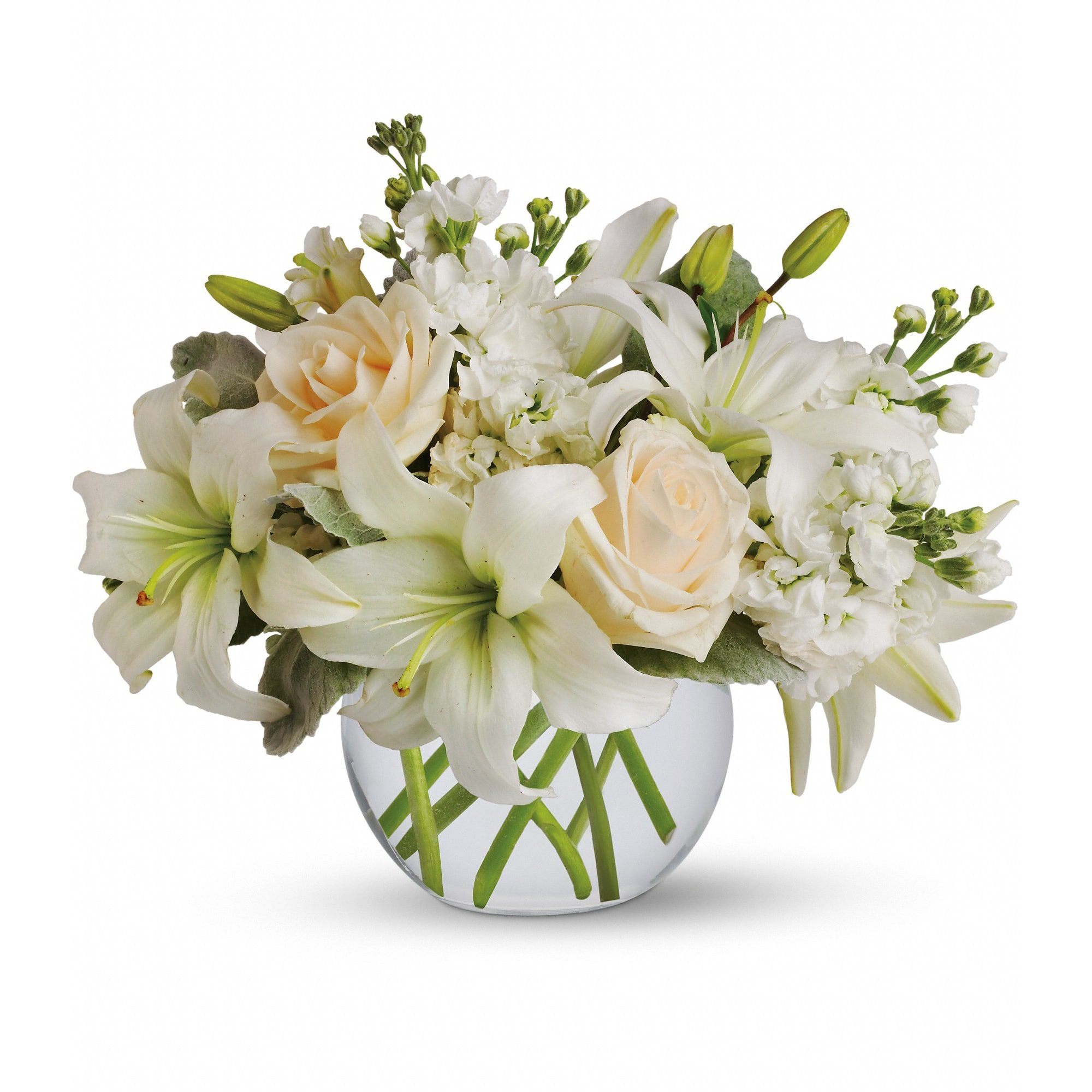 Isle Of White By Teleflora T55 3A