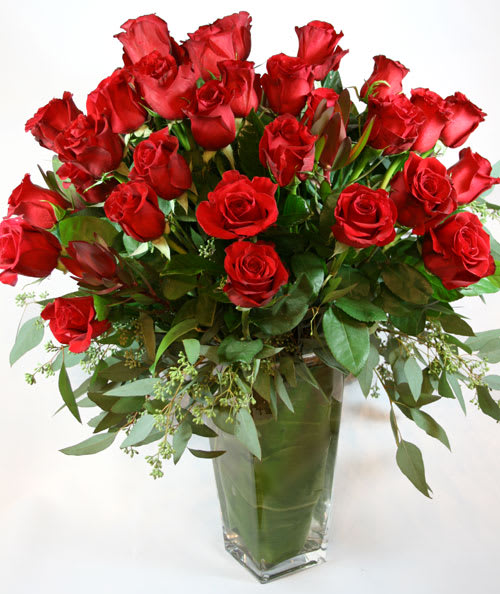 Valentine Famoso Roses 4 Dozen Flowers By Rossi Rovetti Flowers