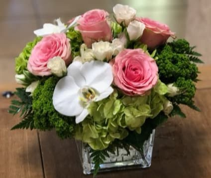 Elegant Rose By Exceptional Flowers Gifts In Boca Raton Fl