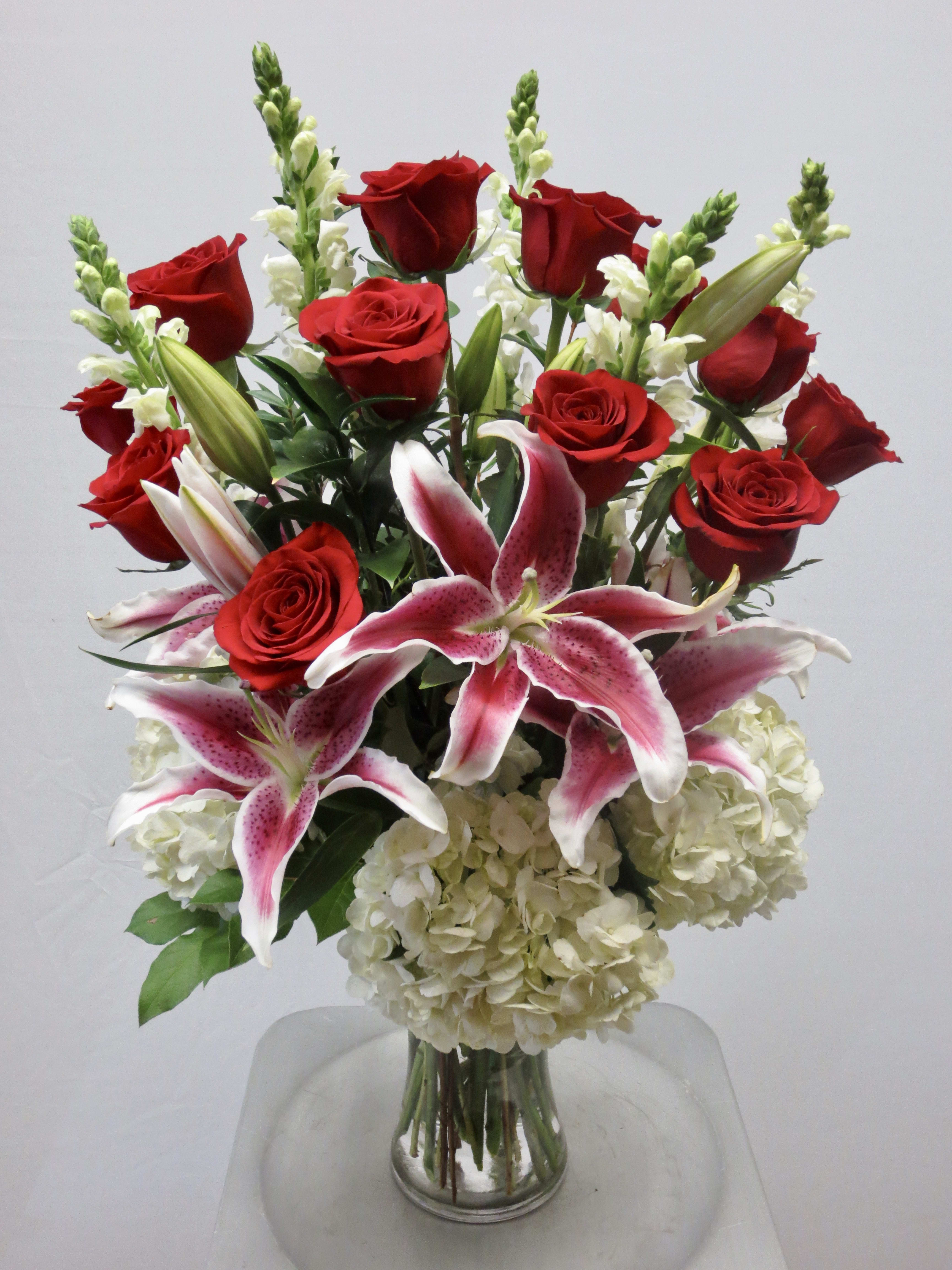 Stargazers And Red Roses