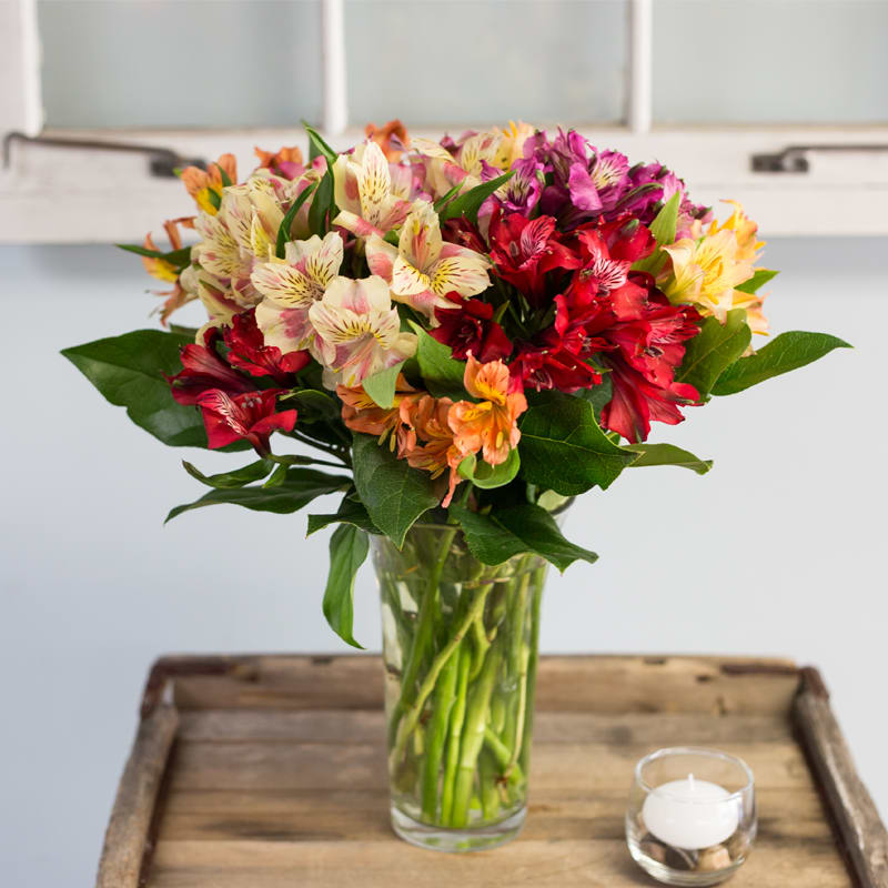 Wedding Flowers Cambridge: Mixed Alstroemeria Bouquet In Cambridge, MA