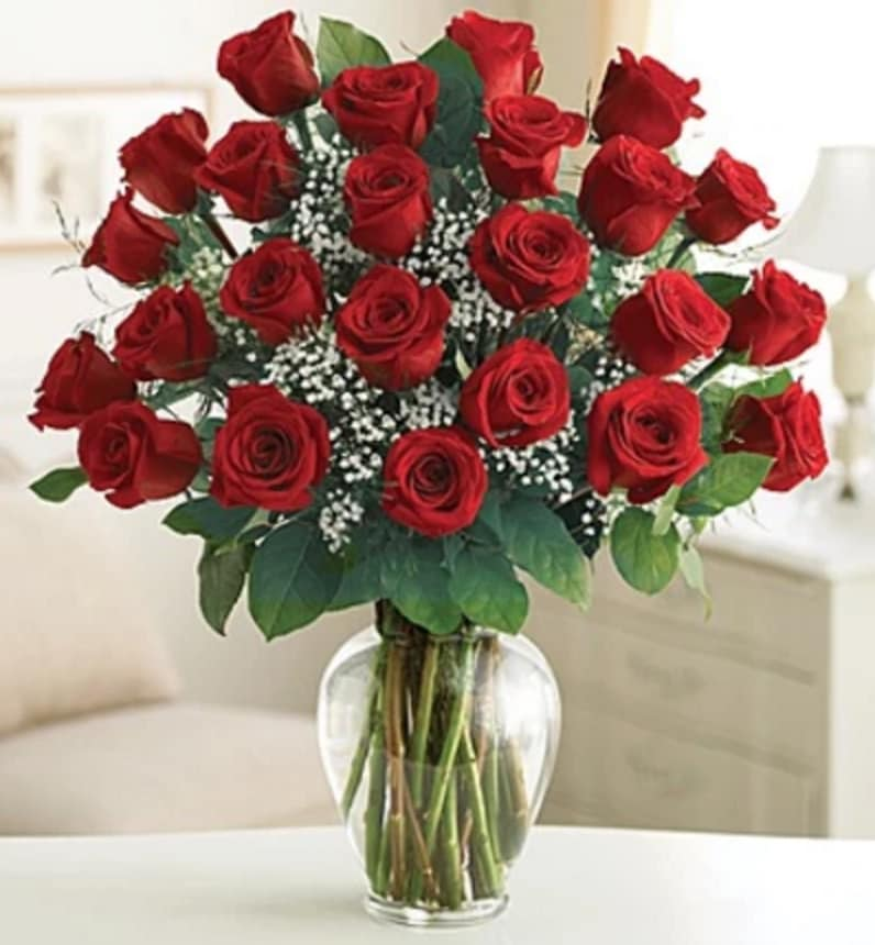 24 Premium Long Stem Red Roses In Chantilly Va Twinbrook Floral