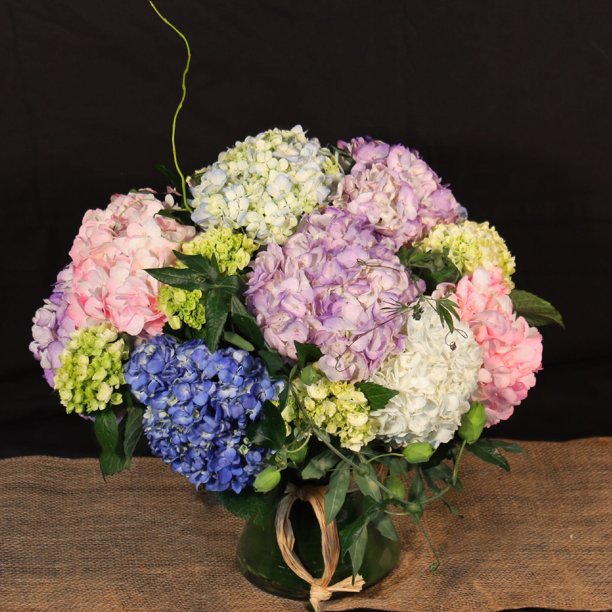 Seamlessly Elegant Hydrangea In New York Ny Flowers
